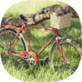 3D自行车越野模拟器