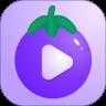 茄子视频下载安装无限看黄瓜安卓视频丝瓜视频